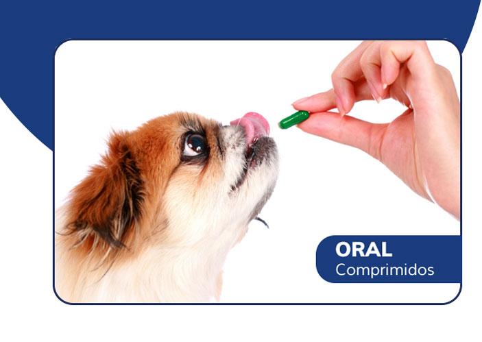 Vermífugo em comprimido por via oral